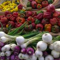 Farmers' Market Fresh Vegetables