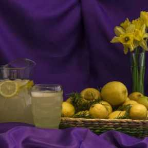 Still Life Lemonade Lemons Rosemary and Daffodils - DSC4321