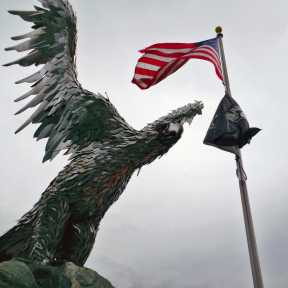 Eagle with Flags