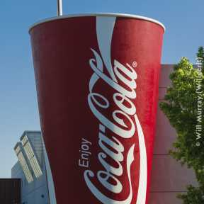 Giant Coke Cup with Straw - DSC4536