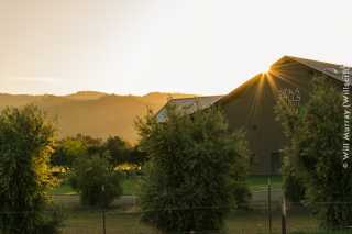 Seka_Hills_Olive_Mill_and_Tasting_Room_at_Sunset_-_DSC4462.jpg