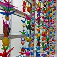Origami Cranes at the Crocker Art Museum